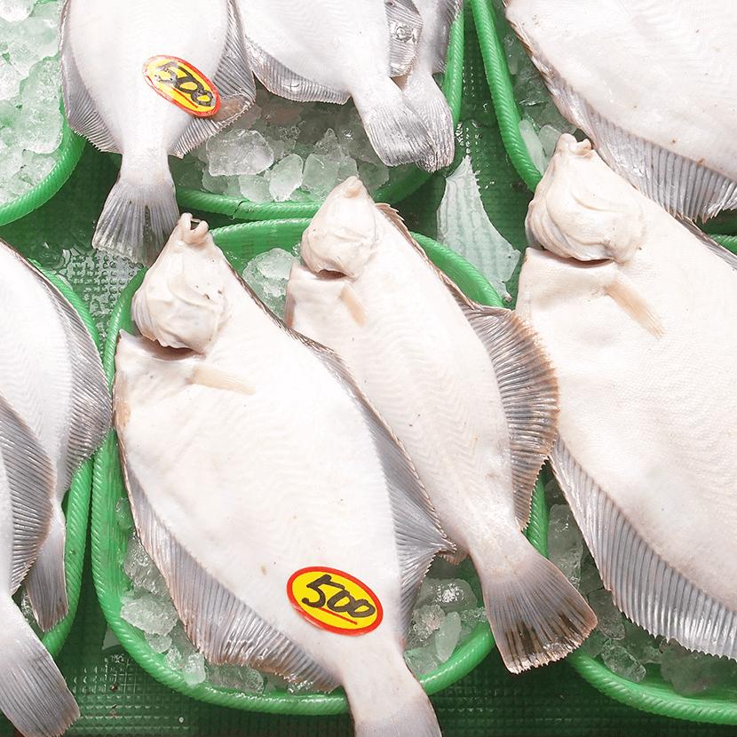 写真:漁師直送 ウロコ水産
